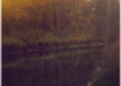Upstream – Short Film by Robb Rokk